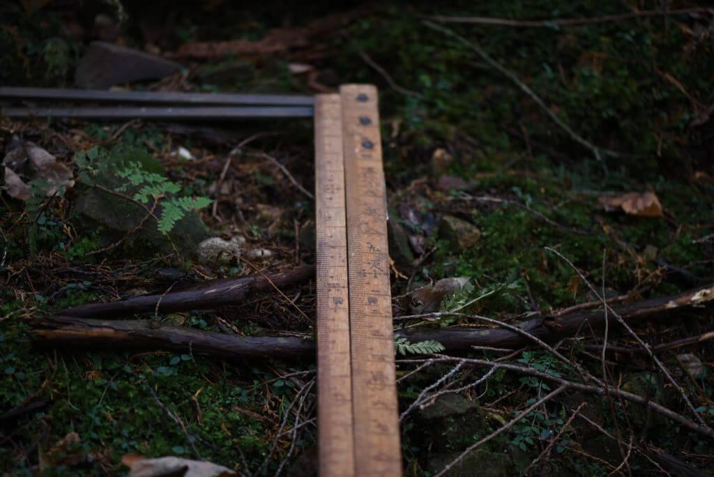 一宮の石場建て1 大黒柱伐採