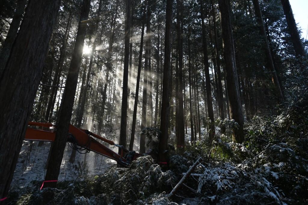 岐阜の石場建て2 木こり会